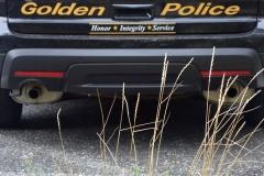 Golden Police